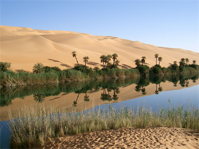 960px-Oasis_in_Libya.png