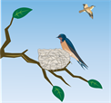 barn-swallow-295793_960_720.png