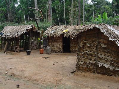 800px-Pygmy_house_outsideview.jpg